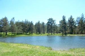 pinecreek pond