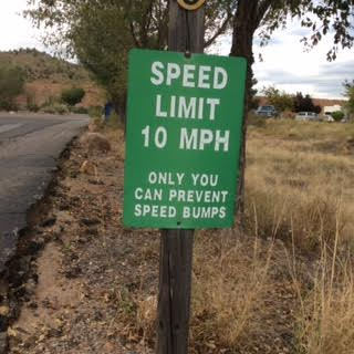 39 speed bumps