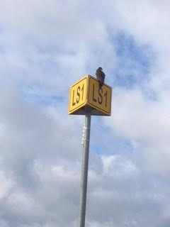 56 bird on riverwalk sign